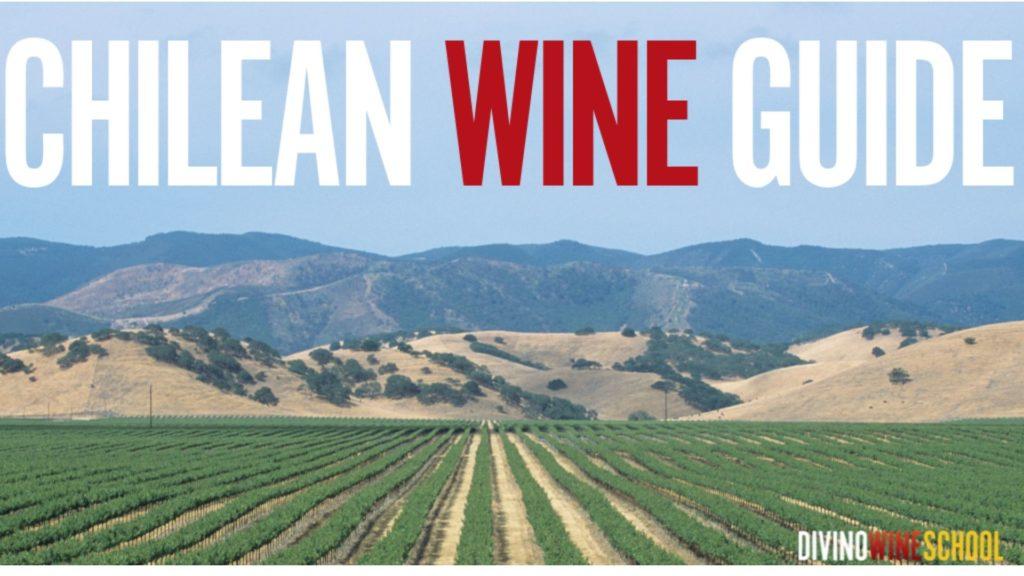 chilean wine guide