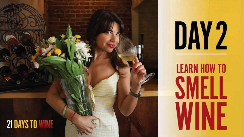 Learn How To Smell Wine