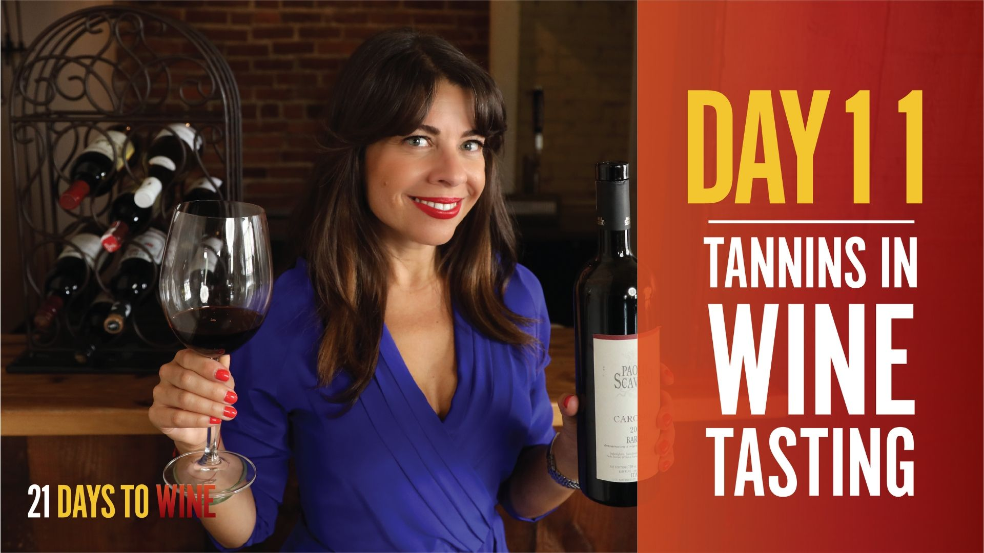 what are tannins in wine