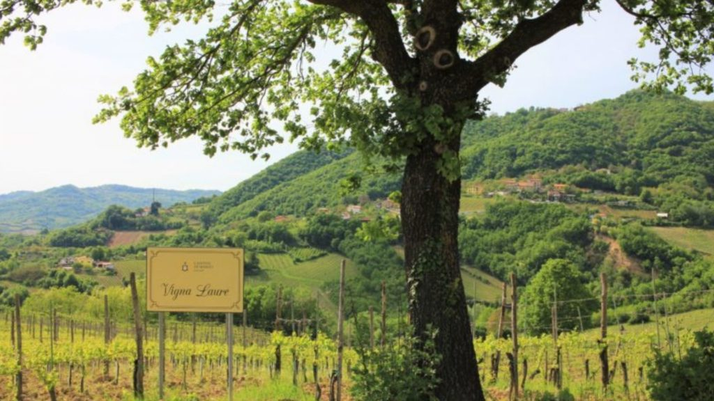 Cantine di Marzo Winery