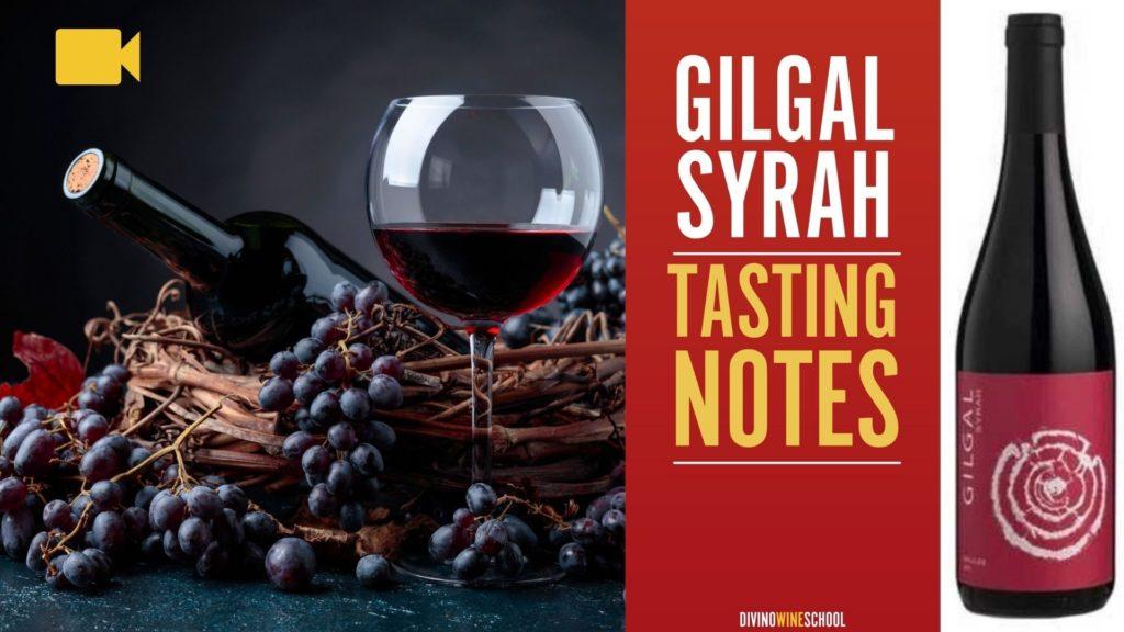 kosher wine reviews gilgal syrah