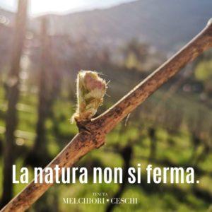 natura non si ferma